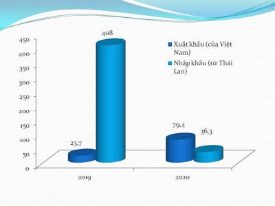 Exports of fruits and vegetables to Thailand surge 230%