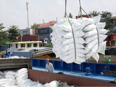 Vietnam's rice exports to the EU stay modest due to limited quota