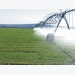 Addressing the risk of polluted irrigation water
