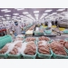 Seafood exports to China on the mend